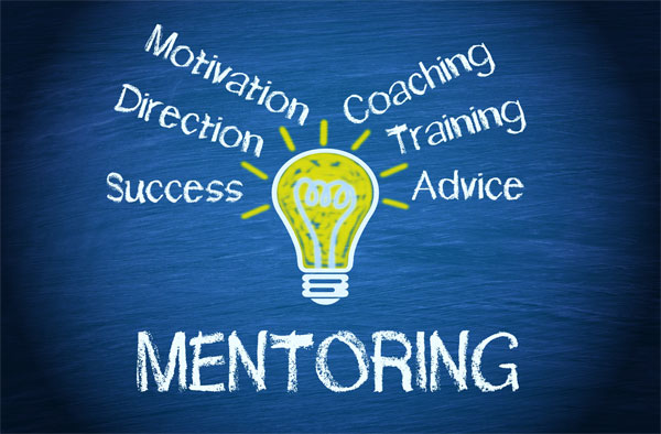 What makes up mentoring diagram