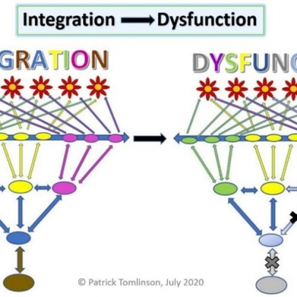 ORGANIZATION INTEGRATION, DISINTEGRATION, AND RECOVERY - PATRICK TOMLINSON (2020)