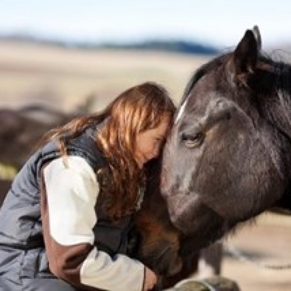 WHY HORSES CAN BE SO THERAPEUTIC IN WORK WITH TRAUMATIZED CHILDREN AND YOUNG PEOPLE – PART 1 (2014) & PART 2 (205) – DEBBIE WOOLFE